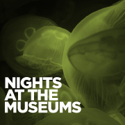 Nights at the Museums