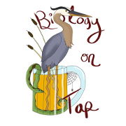 Blue Heron in a Beer Mug with Snake