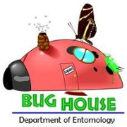 The Bug House logo with a lady bug house with a bee hive, butterfly and cricket on top of it.