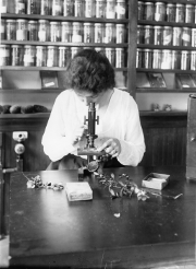 An old black and white photo of a woman looking through a microscope.