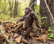 Picture of a homosapien figure walking through a forest.