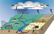 A graphic of the water cycle and groundwater.